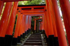 Fushimi Inari shrine, Kyoto Japan. Royalty Free Stock Photos