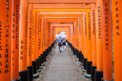 Fushimi Inari Shrine in Kyoto Japan. Fushimi Inari Shrine or  red torii gates in Kyoto Japan in a rainy day Stock Photos