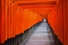 Fushimi Inari Shrine on in Kyoto Royalty Free Stock Photo