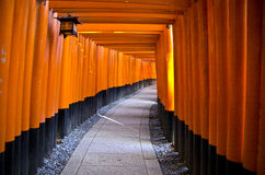 Fushimi Inari Shrine, Kyoto. Fushimi Inari Shrine - near Kyoto, Japan. It is dedicated to the Shinto god Inari. This shrine is famous for its countless torii Stock Photography