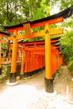 Fushimi Inari Shrine Torii Gate Entrance Nobody Royalty Free Stock Image