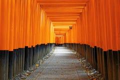 Fushimi Inari Shrine Torii in kyoto Japan Royalty Free Stock Image