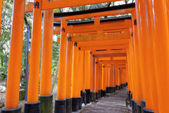 Fushimi Inari Shrine Torii in kyoto Japan Royalty Free Stock Images