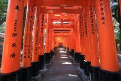 Fushimi Inari Taisha寺庙在京都, 库存照片