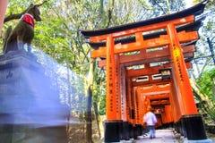 Fushimi Inari Taisha Immagine Stock Libera da Diritti