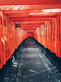 Fushimi Inari-taisha fotografia stock