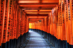 Fushimi inari taisha gates. Fushimi inari taisha torii gates. Famous fushimi inari is located in kyoto japan. Important Shinto shrine Stock Images