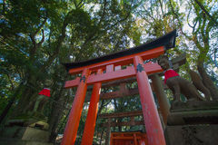 Fushimi Inari Taisha Stock Image