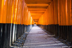 Fushimi Inari Taisha relikskrin. Kyoto. Japan Royaltyfri Foto