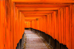 Fushimi Inari Taisha Shrine in Kyoto, Royalty Free Stock Photos
