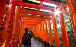 Fushimi Inari Taisha Shrine, Kyoto, Japan Stock Photography
