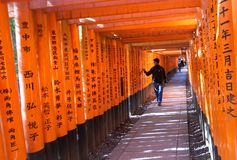 Fushimi Inari Taisha Shrine, Kyoto, Japan Stock Photo