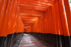 Fushimi Inari Royalty Free Stock Photos