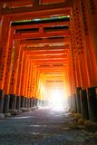 Fushimi Inari Taisha torii, Kyoto, Japan Stock Photo