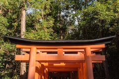 Святыня taisha inari Fushimi в Киото, Японии стоковые изображения rf