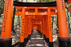 Fushimi Inari tori gates Stock Photography