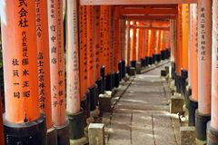 Fushimi inari torii Royalty Free Stock Photo