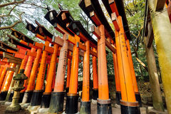 Fushimi Inari torii gates, Stock Photo
