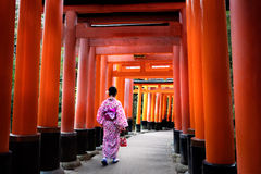 Fushimi-inari Royalty Free Stock Images
