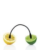 Fusión del limón y de la cal con la reflexión Fotografía de archivo