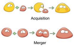 Fusión y adquisición