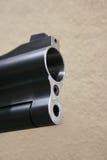 Fusil de chasse d'alésage photographie stock