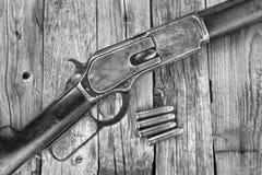 Fusil de l'antiquité 1876 Images libres de droits