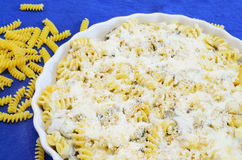 Fusilli and cheese Stock Image