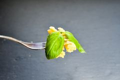 Fusilli pasta på gaffel Royaltyfri Bild
