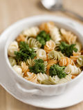 Fusilli pasta salad Royalty Free Stock Photo