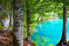 Fusine mountain lake Stock Image