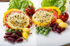 Fusion Food. Many kind of vegetable for healthy eating royalty free stock image