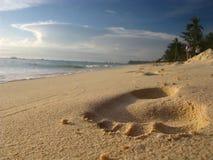 Fuss-Druck auf auffallendem tropischem Sand-Strand Stockfoto