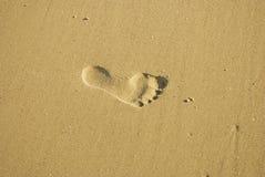 Fuss-Drucke im Sand stockfoto
