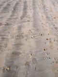 Fuss-Schuh-Druck-Sand Lizenzfreies Stockfoto