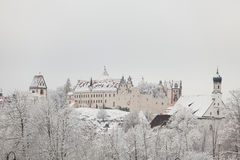 Fussen Castle in winter landscape Stock Images