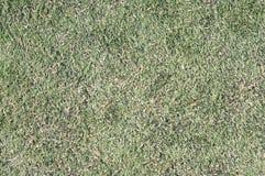 Futbol amerykański śródpolna trawa Zdjęcie Stock