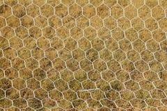 Futbol sieć Obraz Stock