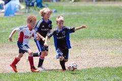 Futbolistas del fútbol de la juventud que corren con la bola Imágenes de archivo libres de regalías