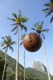 Futbolowa piłki nożnej piłka Sugarloaf Halny Rio De Janeiro Brazylia Obraz Royalty Free