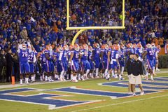 Futebol americano dos gators de Gainesville imagem de stock