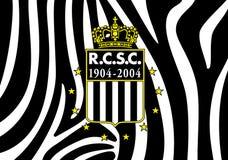Futebol belga ostentando Les Zebres do clube de Charleroi Foto de Stock