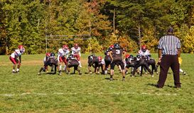 Futebol da liga da juventude - 5 Foto de Stock Royalty Free