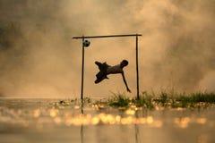 Futebol de salto do pontapé do menino da silhueta do futebol do tiro da ação Imagens de Stock Royalty Free