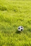 Futebol do brinquedo na grama imagens de stock royalty free