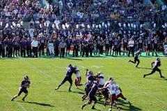 Futebol do noroeste dos Wildcats Fotos de Stock Royalty Free