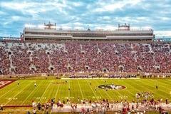 Futebol do Seminole do estado de Florida Foto de Stock