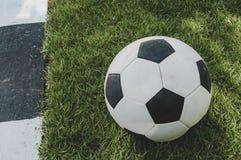 Futebol em gramas Foto de Stock