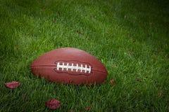 Futebol na grama Fotos de Stock Royalty Free