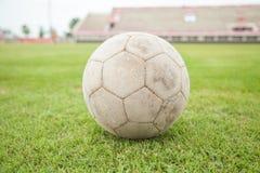 Futebol na grama Fotos de Stock